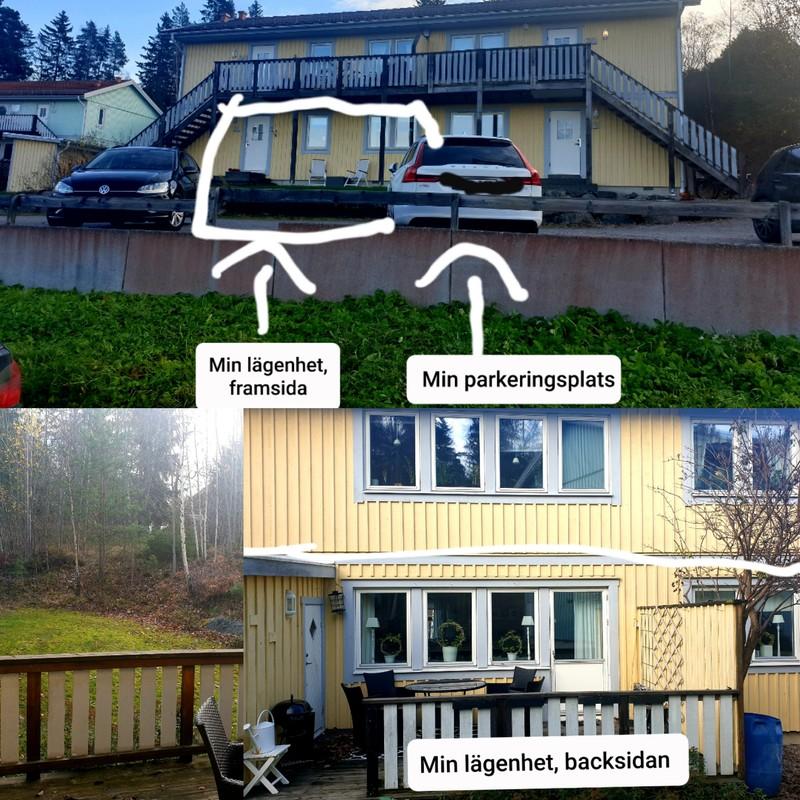 Singlar i kersberga De bsta iderna - patient-survey.net